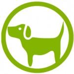 gravidez canina