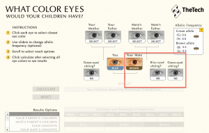 Calculadora Cor dos olhos do bebê 02